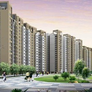 Rohtas Projects Limited Lucknow